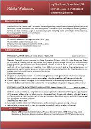 best resume format it professional