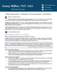 executive resume infographic resume example for executive senior executive resume infographic resume example for executive senior management resumes examples management resumes