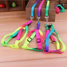 Rainbow <b>Dog Collar Harness Leash</b> Set | pupaddict.com