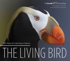coffee table book features gorgeous photos and essays from coffee table book features gorgeous photos and essays from kingsolver diamond and others all about birds