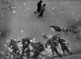 Image result for oct 23 1956 hungary bodies