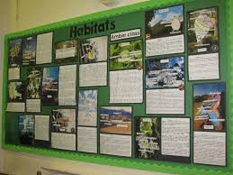 images about Science   Habitats on Pinterest Habitats Display  classroom displays  class display  animal  minibeasts  habitats  sea
