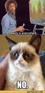 Angry cat on Pinterest | Grumpy Cat, Animal Funnies and Cats via Relatably.com