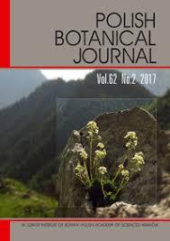 Isatis Armena (Brassicaceae), New For Flora Palaestina : Polish ...