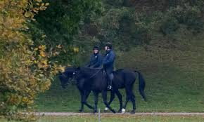 Prince Andrew pictured <b>horse riding</b> near the <b>Queen's</b> Windsor home