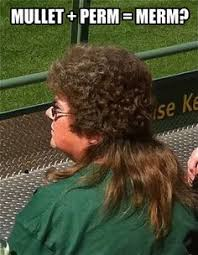 BAD HAIRCUT on Pinterest | Mullets, Haircuts and Weird Hairstyles via Relatably.com