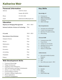 how to prepare a curriculum vitae templates best curriculum vitae example