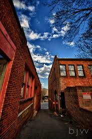 17 best images about charlotte and nc botanical alleyway asheville nc