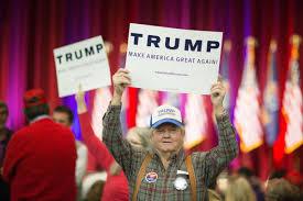 american populism a social history essay  american populism a social history essay