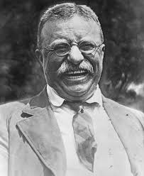 theodore roosevelt quotes about life morality politics theodore roosevelt quotes about happiness