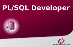 Image result for PL/Sql Developer Images