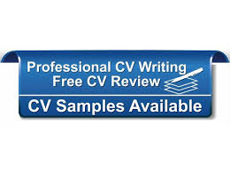 Professional CV Writing Services