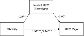 Ethnic Variation in Gender-STEM Stereotypes and STEM Participation