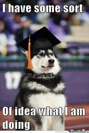 Husky Memes. Best Collection of Funny Husky Pictures via Relatably.com