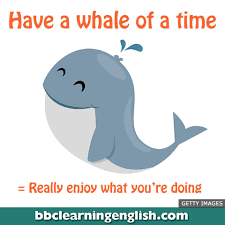 BBC Learning English - ☺️   Are you <b>having a whale of</b> a time this ...