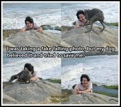 I was taking a fake falling photo   Funny Dirty Adult Jokes, Memes ... via Relatably.com