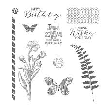 Image result for butterfly basics stampin up