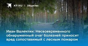 Иван Валентик: Несвоевременного обнаруженный очаг ...
