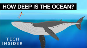 This Incredible Animation Shows How Deep <b>The Ocean</b> Really Is ...