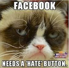 Grumpy Cat on Pinterest | Grumpy Cat Meme, Grumpy Cat Cakes and Meme via Relatably.com