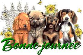 """Résultat de recherche d'images pour """"gif bon week end chiens"""""""