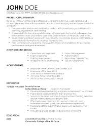 professional security professional templates to showcase your    resume templates  security professional
