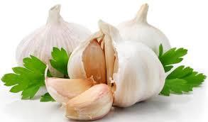 Image result for garlic
