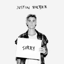 Image result for Sorry by Justin Bieber