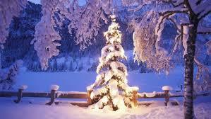 Bildergebnis für weihnachten winter bilder