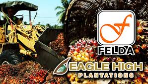 Image result for felda scandal
