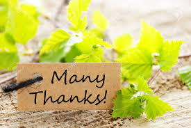 a label many thanks and fresh green leaves in the background a label many thanks and fresh green leaves in the background stock photo 27881279