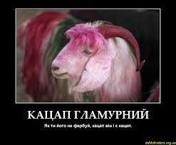 Путин нуждается в новых аннексиях, чтобы сохранить свою популярность, - Яценюк - Цензор.НЕТ 3336