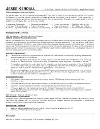 resume examples for accounting professionals experience resumes resume examples for accounting professionals resume examples for accounting professionals