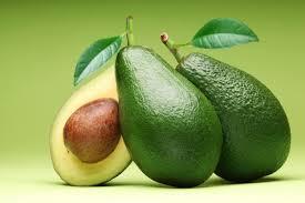 """Résultat de recherche d'images pour """"avocado"""""""
