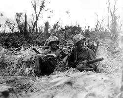 Image result for battle of peleliu
