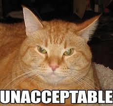 UNACCEPTABLE - Memes Comix Funny Pix via Relatably.com