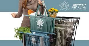 The #1 Reusable Grocery <b>Shopping Bags</b> Solution