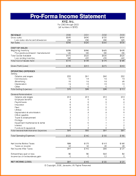 10 pro forma financial statement template newborneatingchart pro forma financial statement template pro forma income statement template 295857 png
