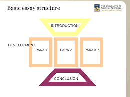 essay structure for arts students