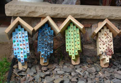 Teens Help   Sweet Nature Project quot If the holes are too large other insects get into them  and if the holes are too small the mason bees can    t get in  quot