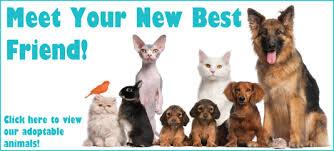 "Image result for ""Humane Society"