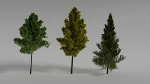<b>Plants</b> Free <b>3D</b> Models download - Free3D
