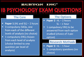 psychology paper grading rubric essay sample rubric