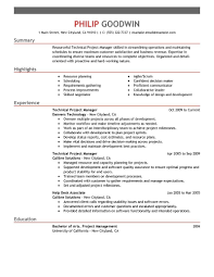 Sample Program Manager Resume Senior It Manager Resume Example Sample It Project Manager Resume Template It