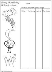 Living and Non Living Things WorksheetsWorksheetsLiving and Non Living Things Worksheet