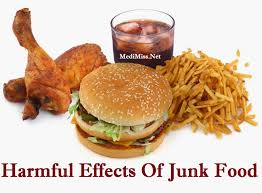 harmful effect of junk food essay order essay cheap