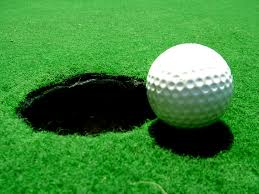 Image result for pics of a hole in one