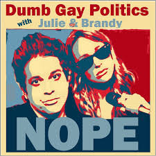 Dumb Gay Politics