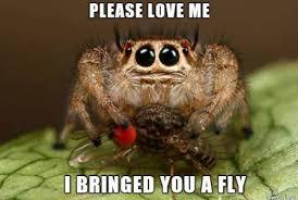 Ok, cure me please: SPIDERS! - Page 6 Images?q=tbn:ANd9GcTj7ZOJFvvmqzVuY8sSWwjTBqegaQiOIldJG3yhZM4YPLtLJwXChw