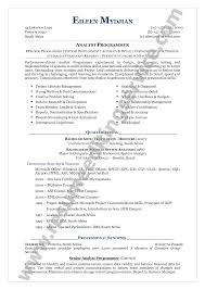resume format   the  seangarrette coresume format